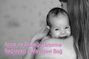 Anne ve Bebeği Birbirine Bağlayan 5 Mucize