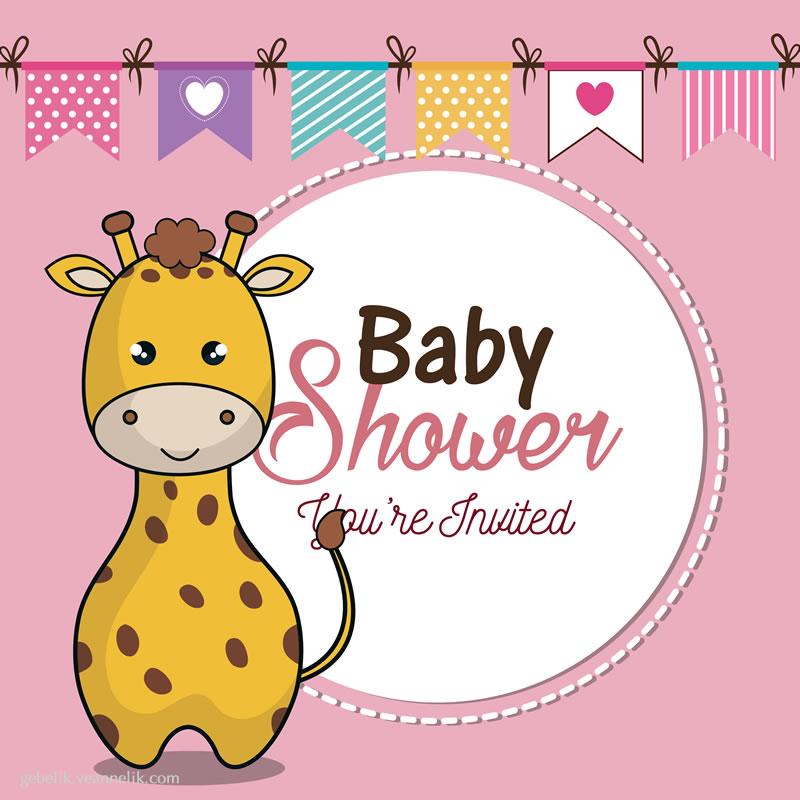 baby-shower-davetiye-ornegi-fotograf-40