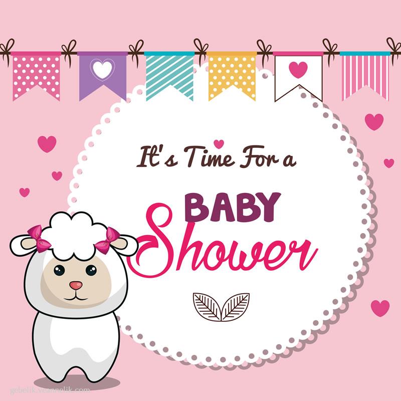 baby-shower-davetiye-ornegi-fotograf-41