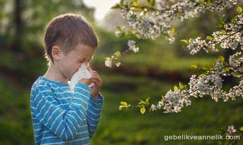 Beşinci Hastalık (Tokatlanmış Yanak Sendromu) belirtileri neler
