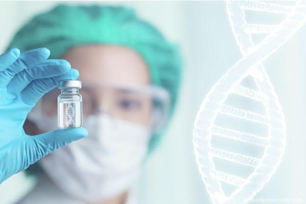 fetal dna testi ne kadara yapilir
