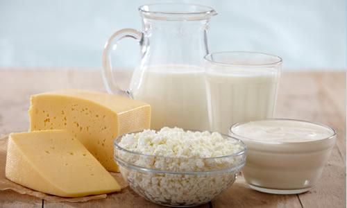 yogurt sut peynir