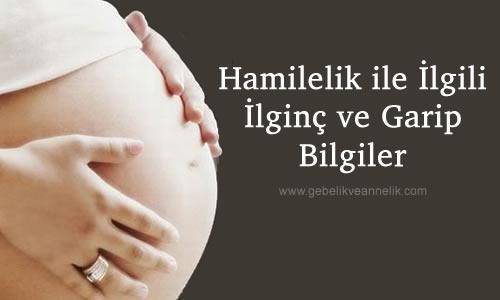 hamilelikle ilgili bilgiler