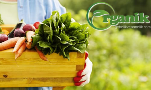 organik urunler