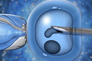 Tüp Bebek Tedavisi Öncesi Yapılan Serolojik Testler