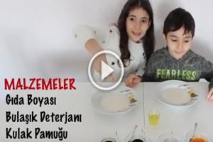 Sihirli Süt Deneyi Nasıl Yapılır?