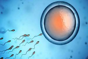 Tüp Bebek Uygulamalarında Tüplerin Açık Olması Gerekli midir?